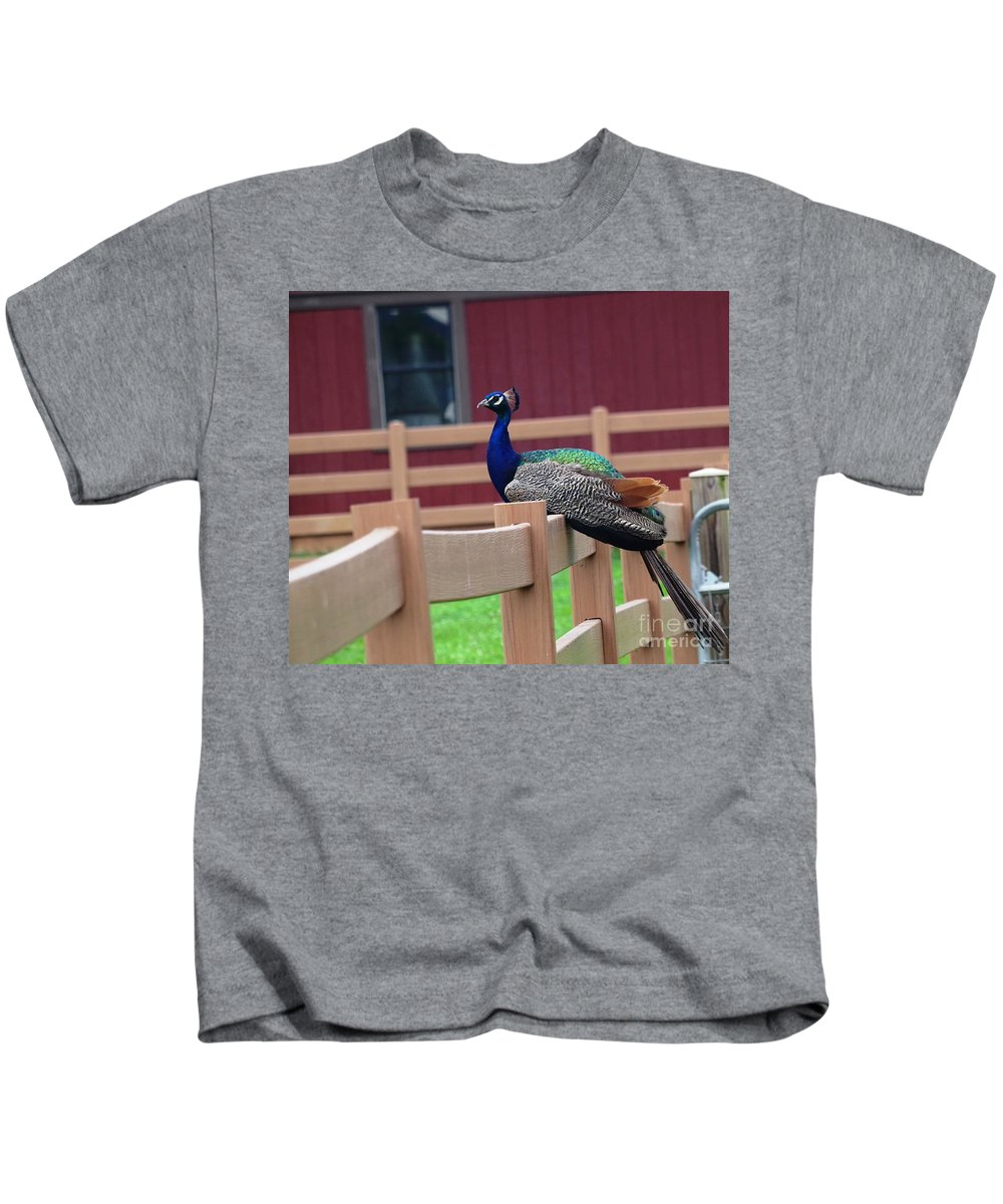 Peacock Kids T-Shirt featuring the photograph Sitting Peacock by Karen Quinker