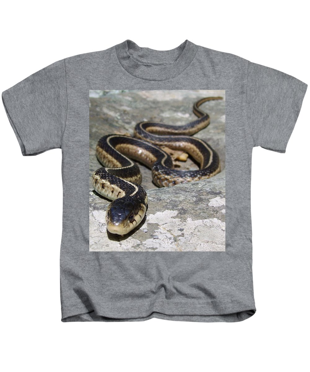 Virginia Garter Snake Photographs Garter Snake Canvas Prints Serpent Nature Reptile Wildlife Biodiversity Mountain Forest Ecology Fauna Kids T-Shirt featuring the photograph Skyline Drive Garter by Joshua Bales