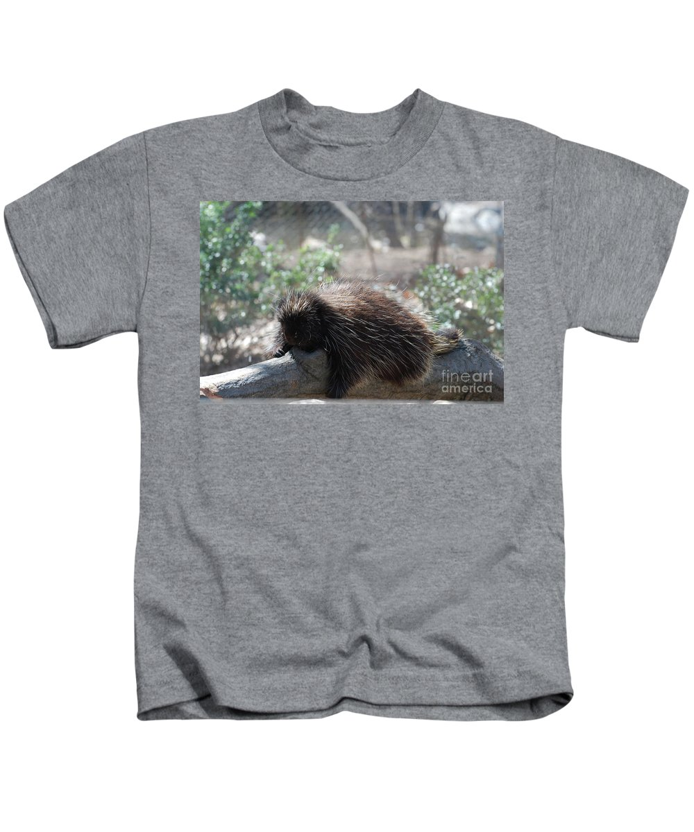 Porcupine Kids T-Shirt featuring the photograph Sleeping Porcupine With Lots Of Quills by DejaVu Designs