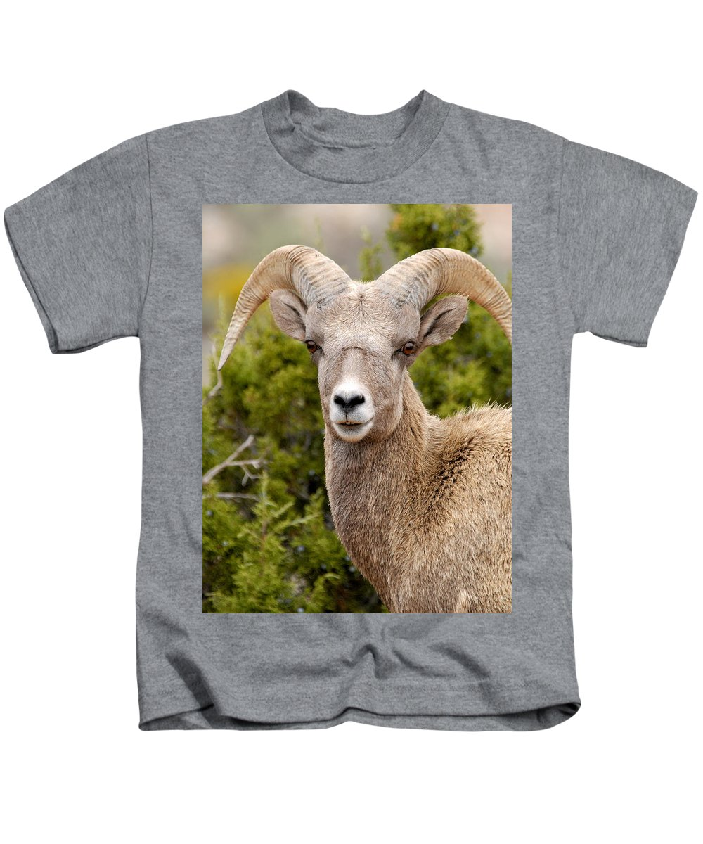 Bighorn Canyon National Recreation Area Kids T-Shirt featuring the photograph Smile For The Camera by Larry Ricker