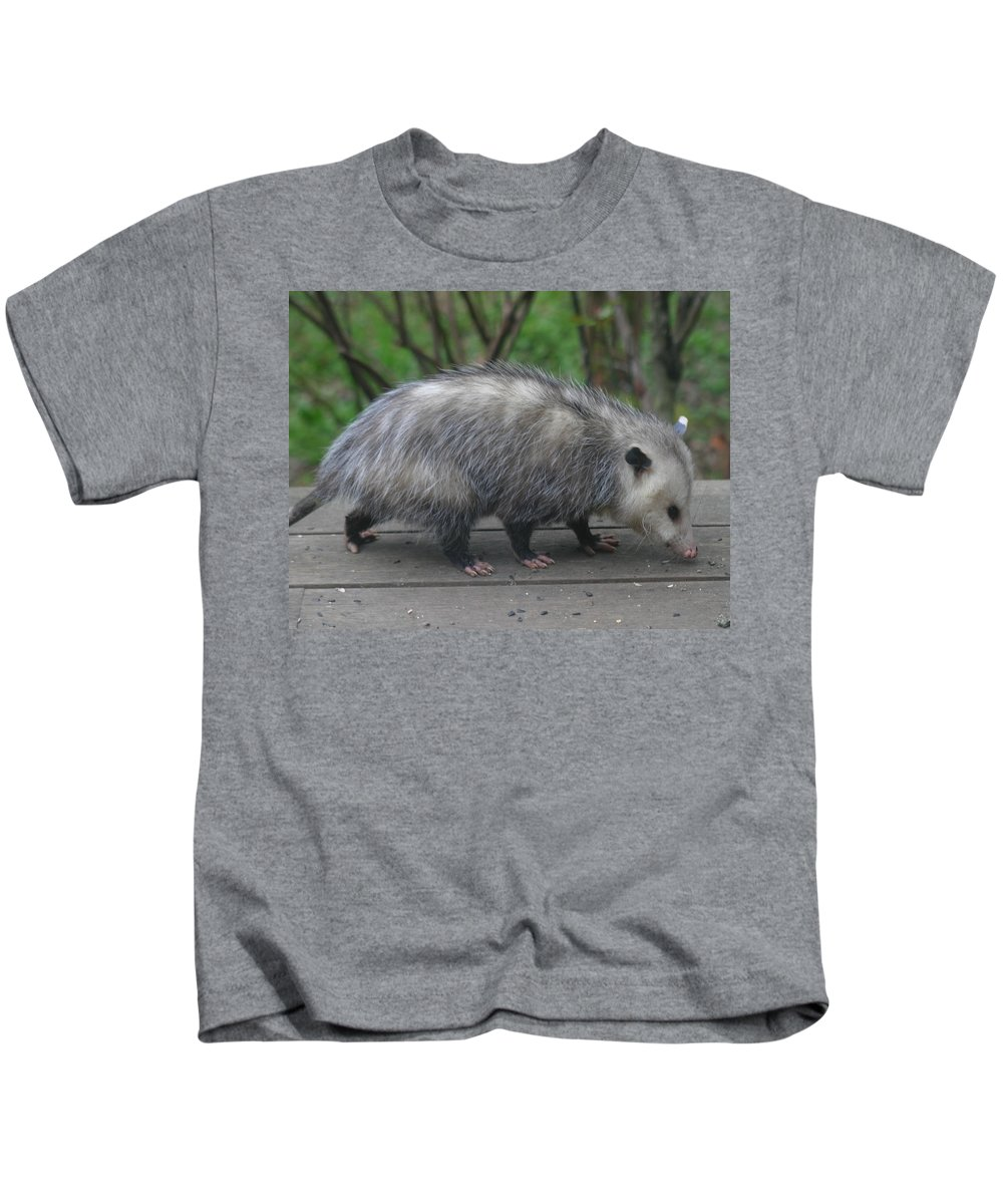 Sniffy The Possum Kids T-Shirt featuring the photograph Sniffing Around by Kym Backland