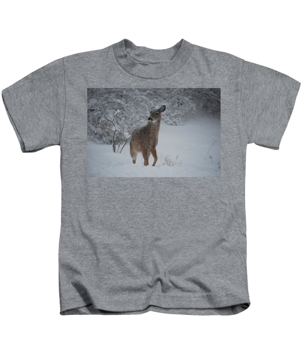 Deer Kids T-Shirt featuring the photograph Snowy Doe by Lori Tambakis