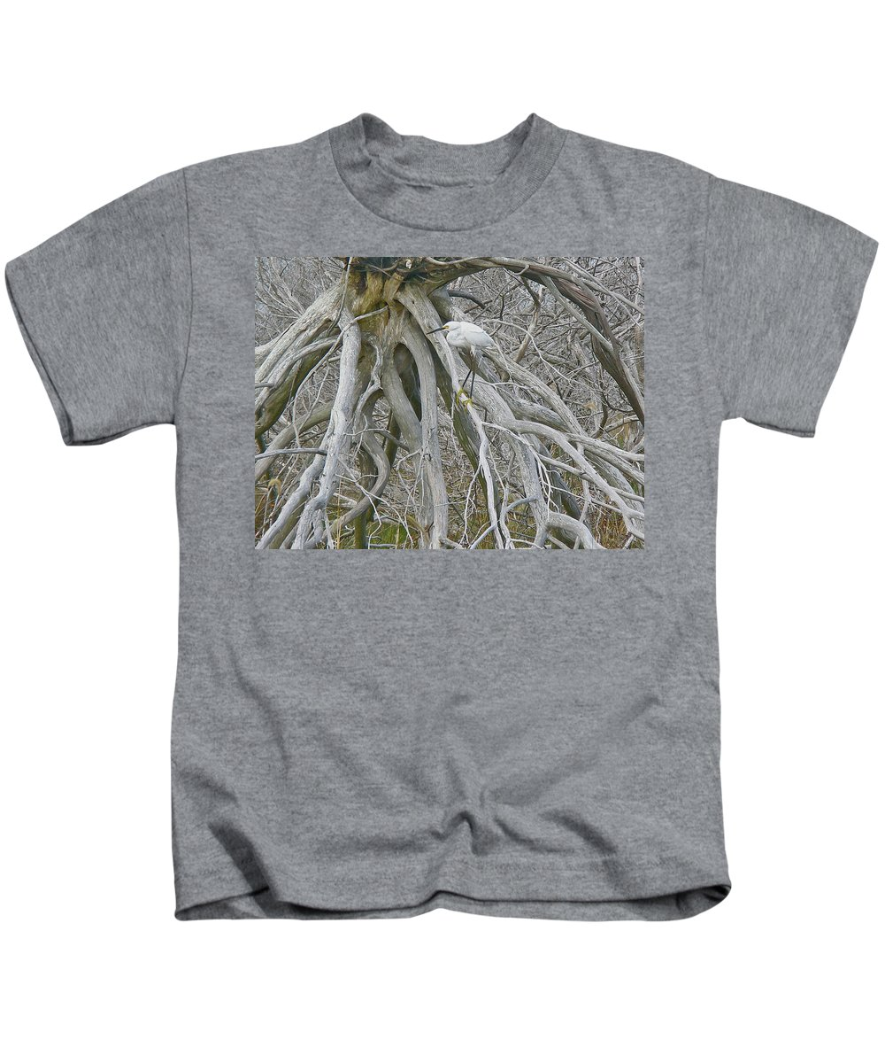 Snowy Egret Kids T-Shirt featuring the photograph Snowy Egret - Egretta Thula - On Marsh Tangle by Mother Nature