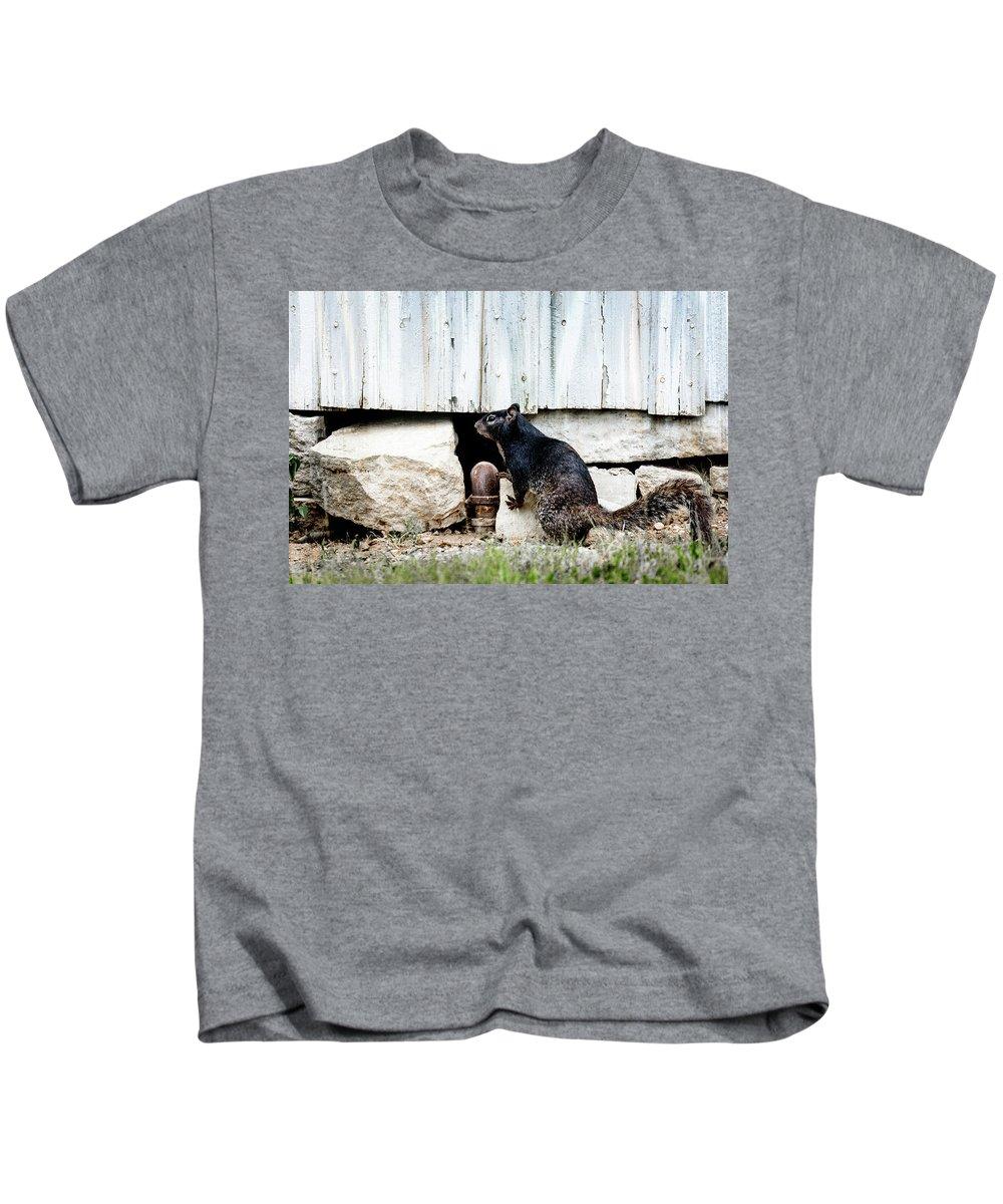 South Texas Squirrel Kids T-Shirt featuring the photograph South Texas Squirrel by Debra Martz