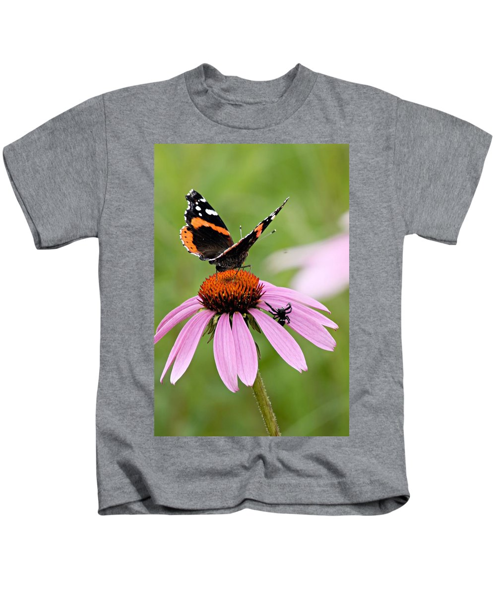 Photography Kids T-Shirt featuring the photograph Spider And Butterfly On Cone Flower by Larry Ricker