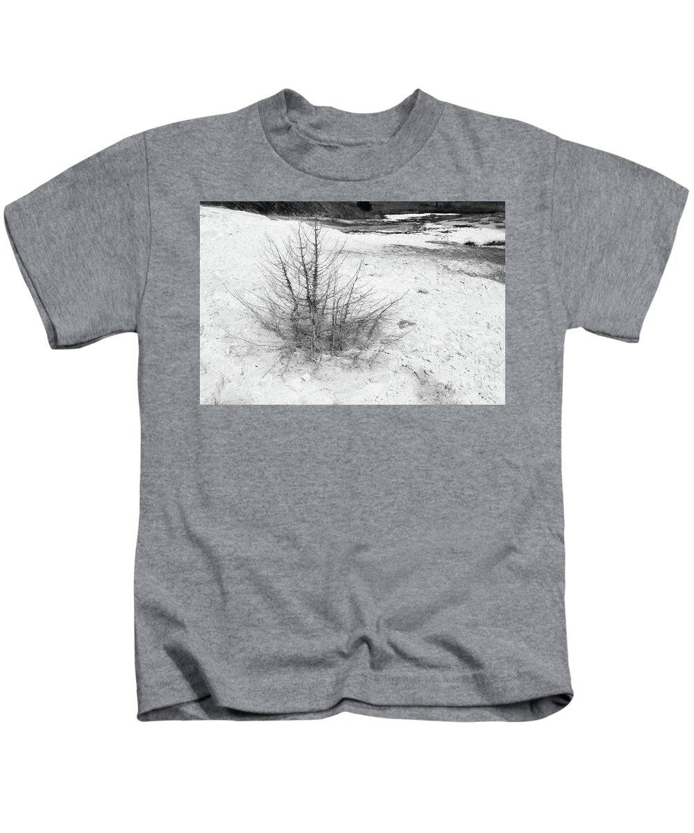 North America Kids T-Shirt featuring the photograph Spider Tree by David Finlayson