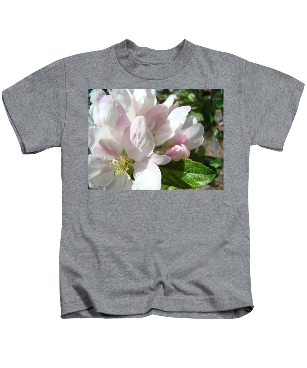 Apple Kids T-Shirt featuring the photograph Spring Apple Blossoms Art Prints Apple Tree Baslee Troutman by Baslee Troutman