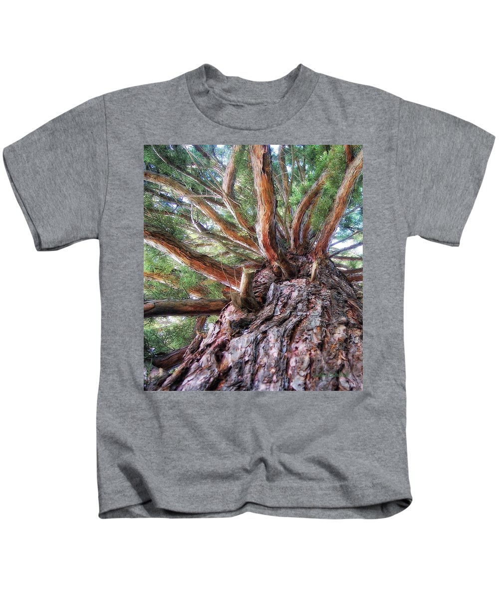 Tree Kids T-Shirt featuring the photograph Squirrel Haven by Donna Blackhall