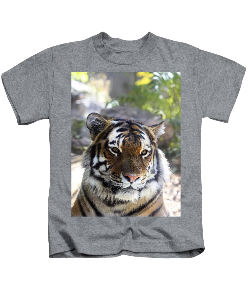 Animal Kids T-Shirt featuring the photograph Striped Beauty by Marilyn Hunt