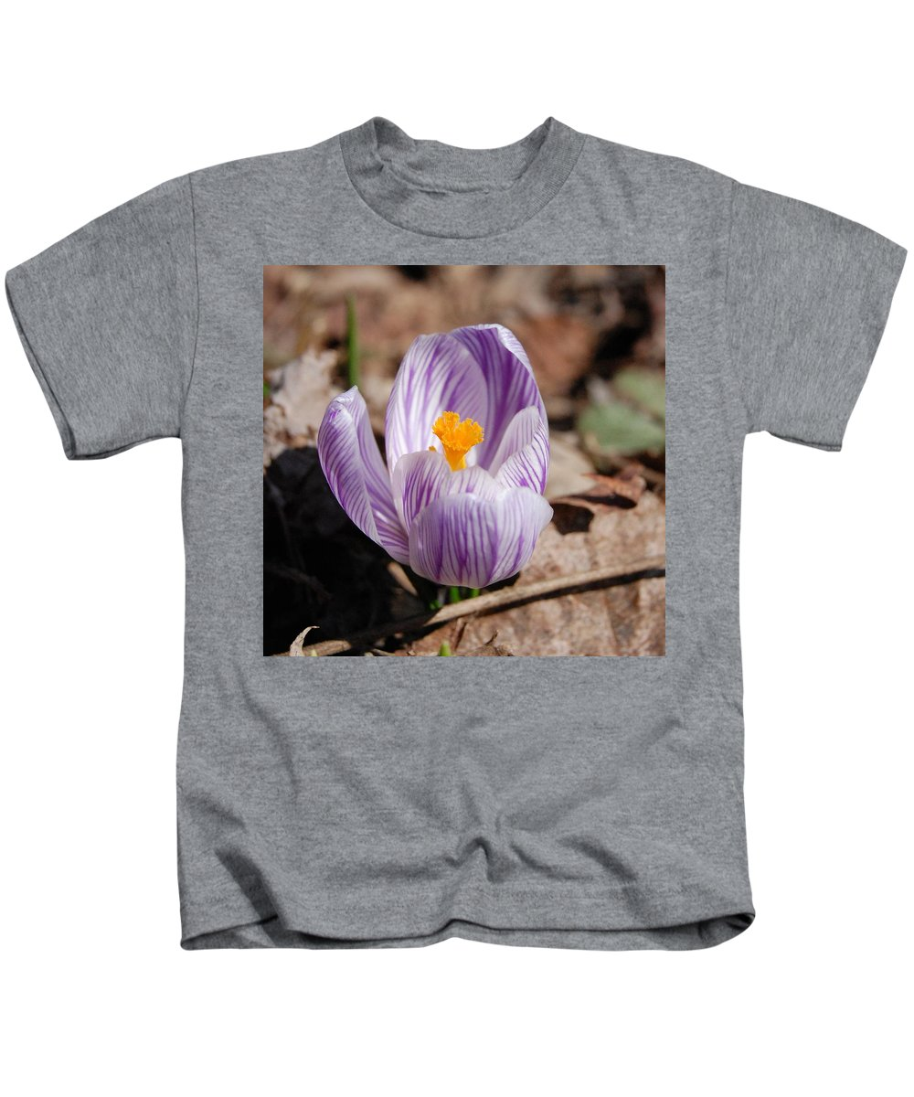 Digital Photography Kids T-Shirt featuring the photograph Striped Crocus by David Lane