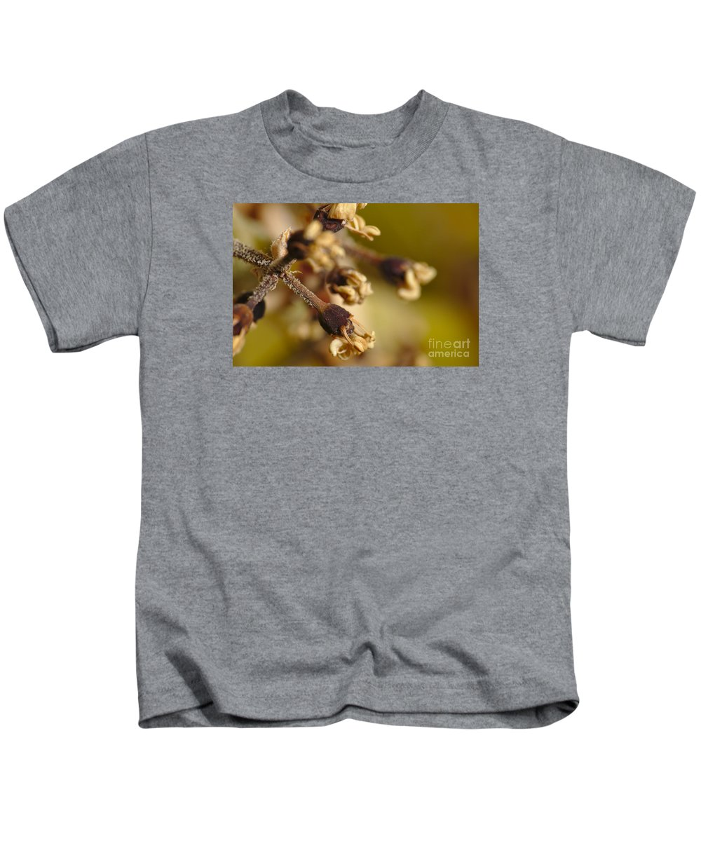 Summer Kids T-Shirt featuring the photograph Stripped by Angelo DeVal