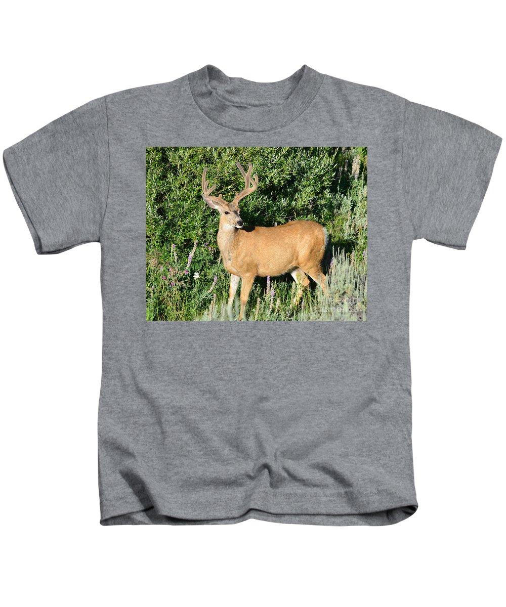 Mule Kids T-Shirt featuring the photograph Summer Buck by Brad Christensen