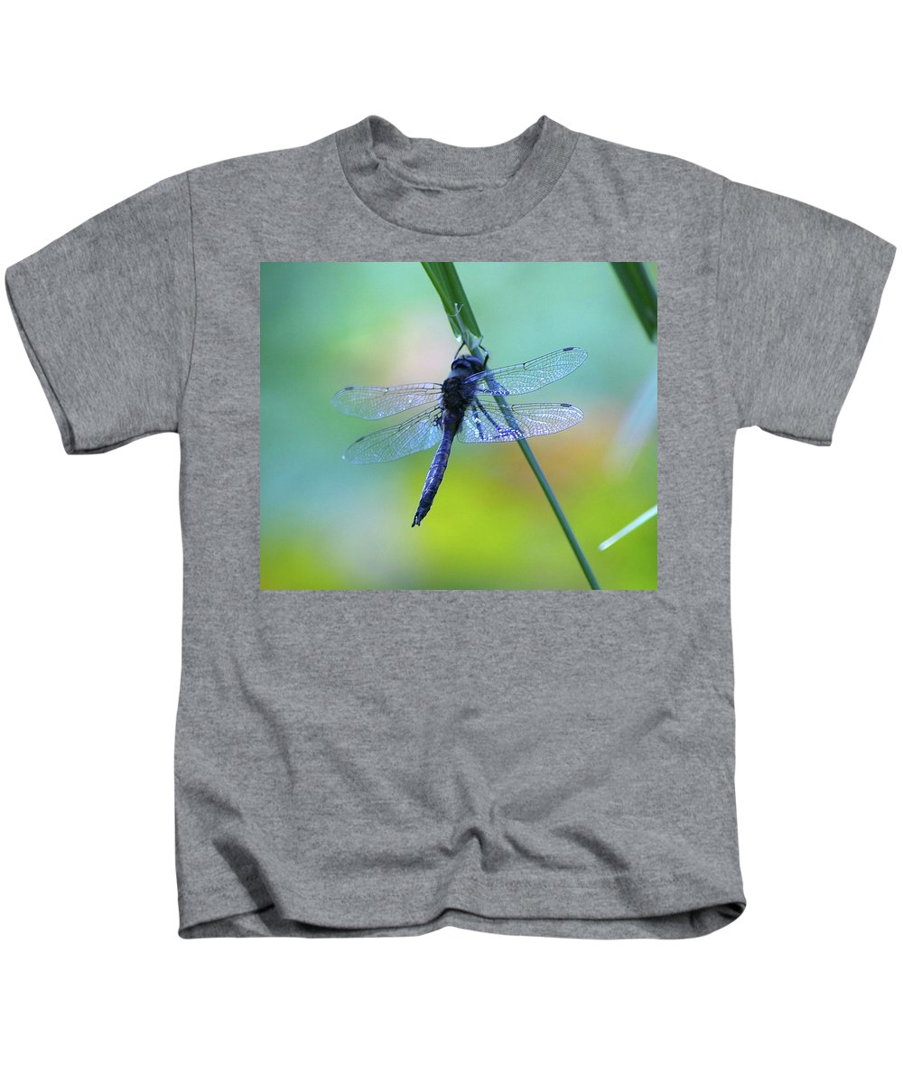 Dragonflies Kids T-Shirt featuring the photograph Swaying On A Stem by Jeff Swan