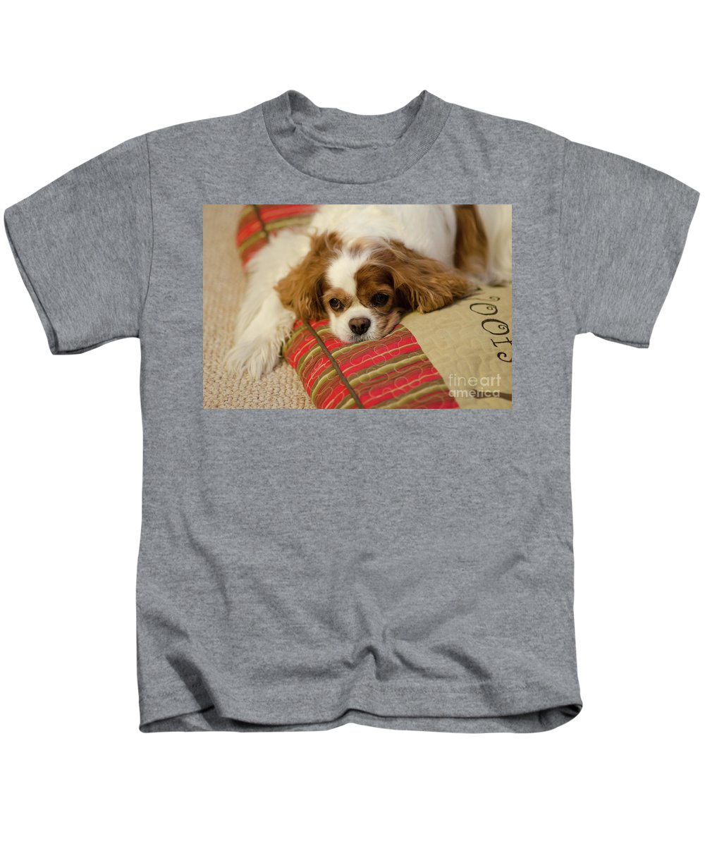 Daisy Kids T-Shirt featuring the photograph Sweet Dog Face by Dale Powell
