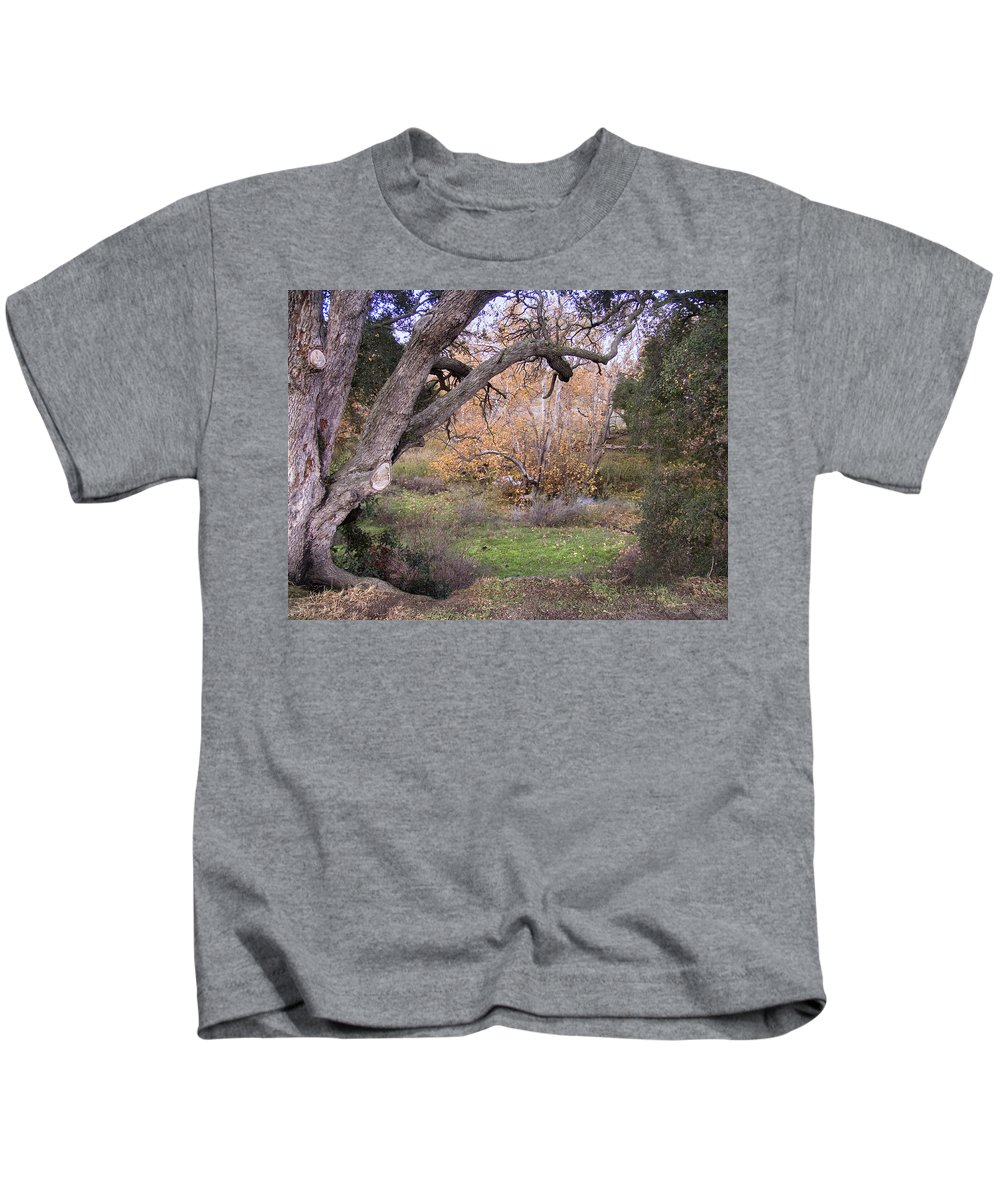 Landscape Kids T-Shirt featuring the photograph Sycamore Grove Fall by Karen W Meyer