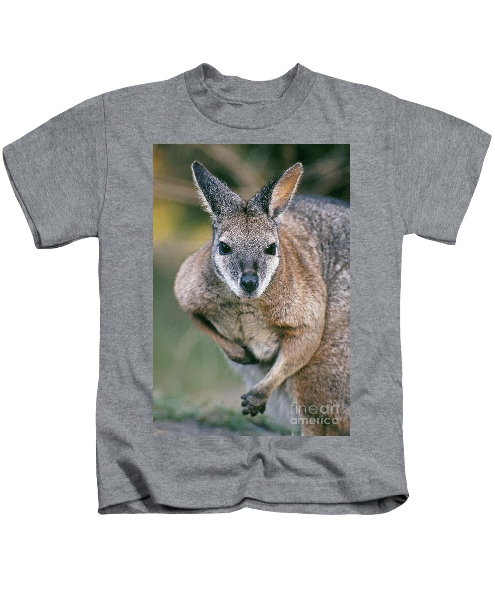 Alert Kids T-Shirt featuring the photograph Tamma Wallaby by Greg Vaughn - Printscapes