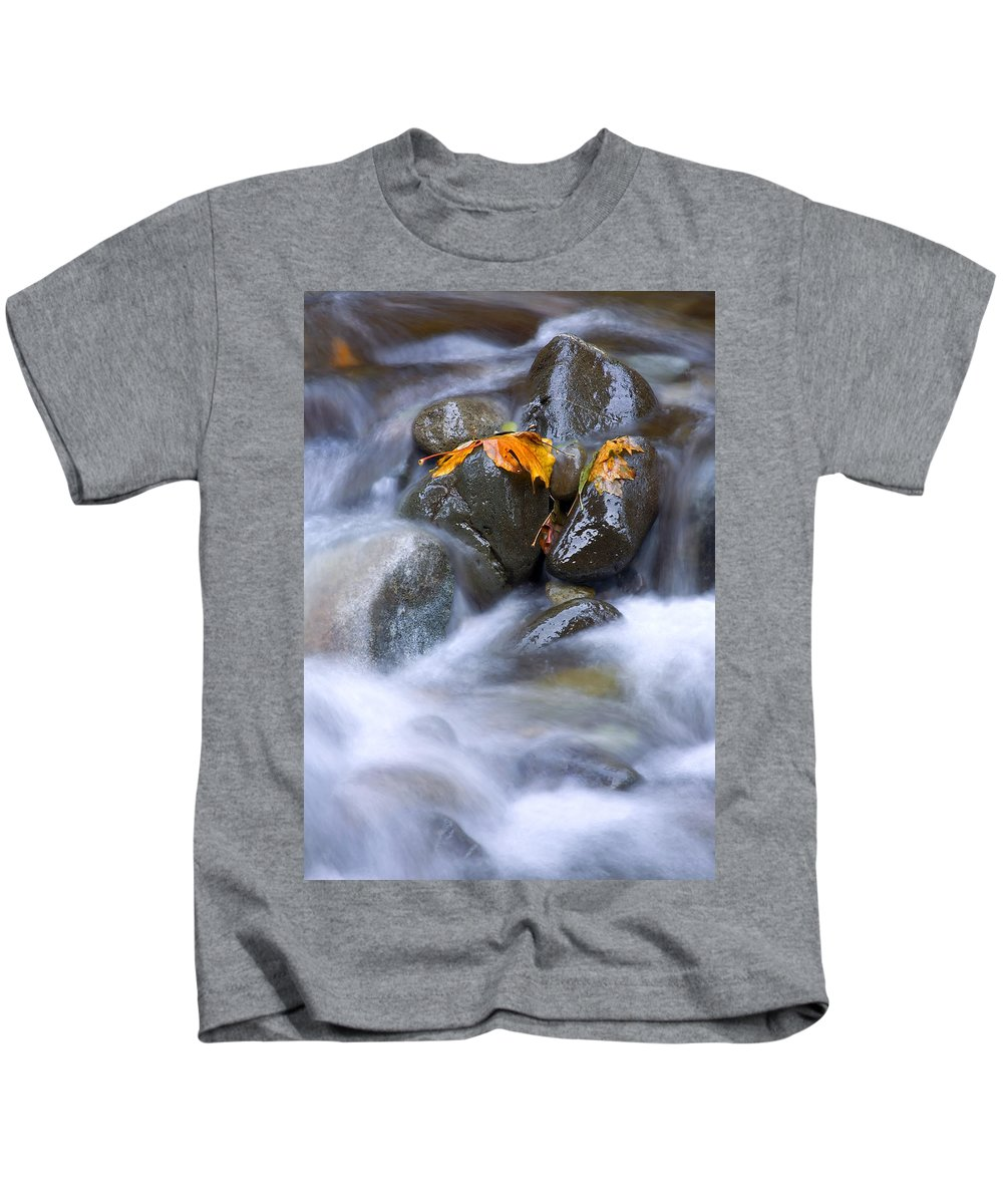 Maple Kids T-Shirt featuring the photograph Textures Of Autumn by Mike Dawson