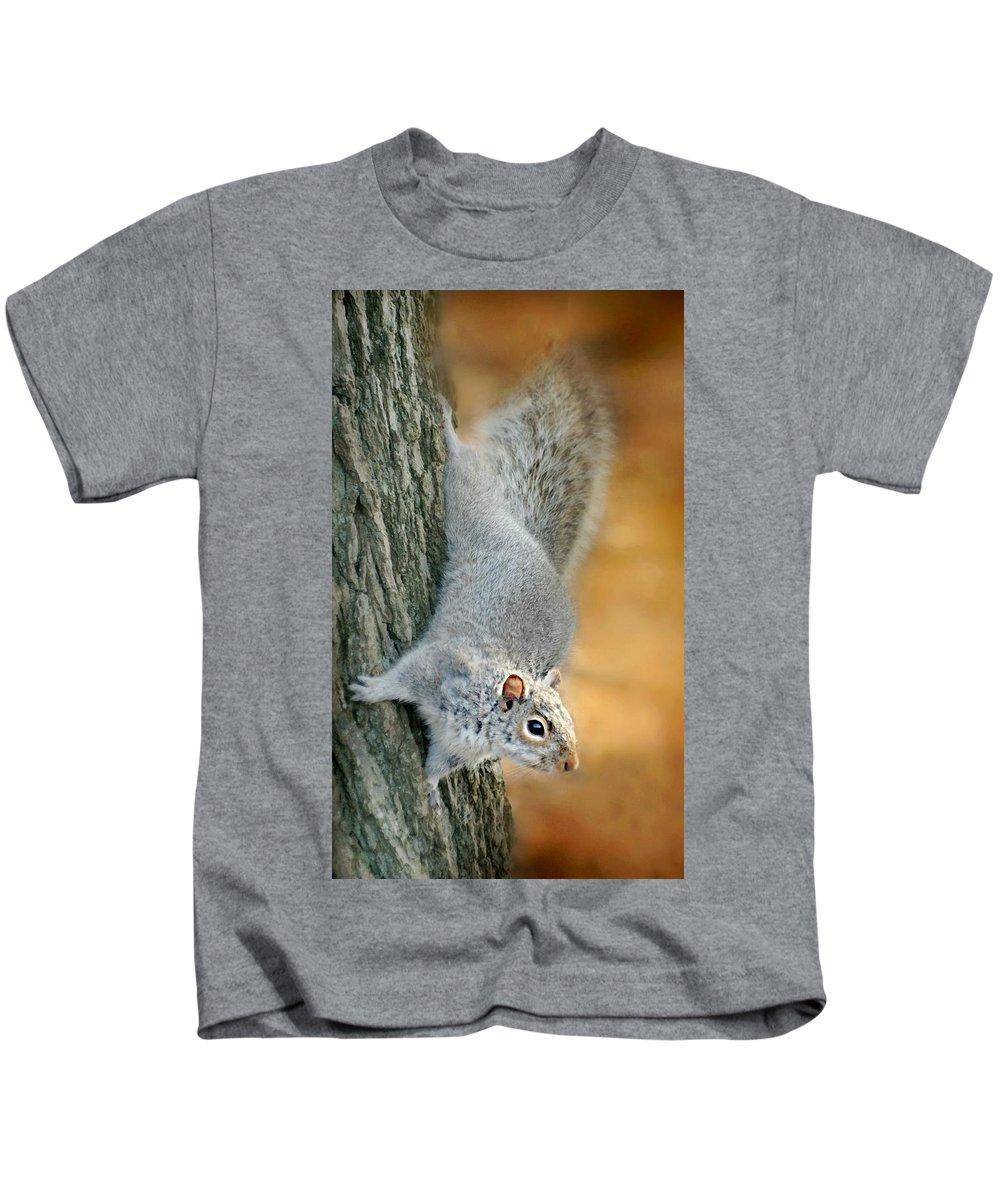 Squirrel Kids T-Shirt featuring the photograph The Down Side by Diana Angstadt