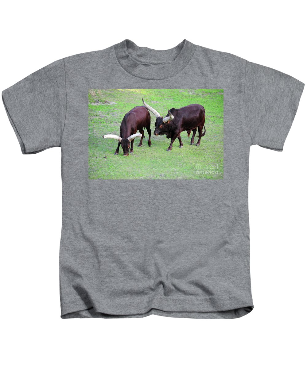 Cow Kids T-Shirt featuring the photograph The Horns by Jost Houk
