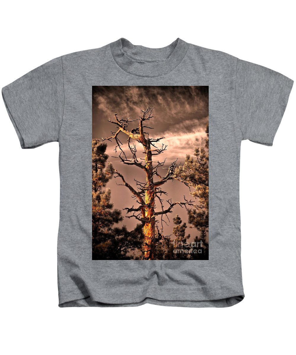 Lurker Kids T-Shirt featuring the photograph The Lurker II by Charles Dobbs