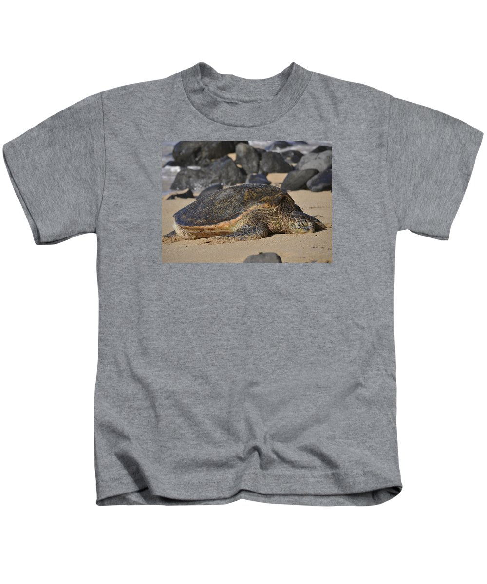 Sea Turtle Kids T-Shirt featuring the photograph The Nap by Karen Rose Warner