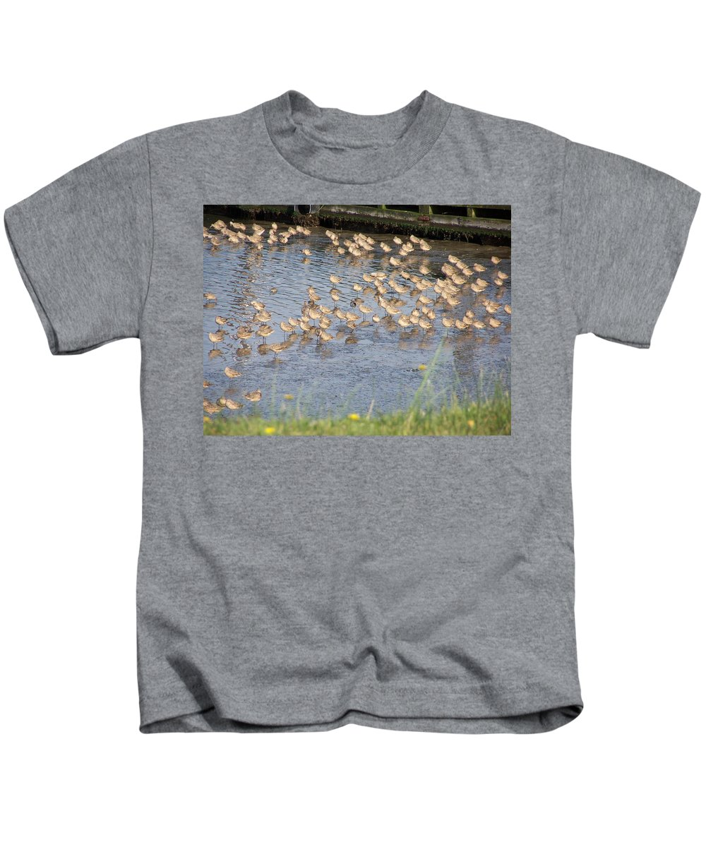 Seabirds Kids T-Shirt featuring the photograph The Plovers by Laurie Kidd