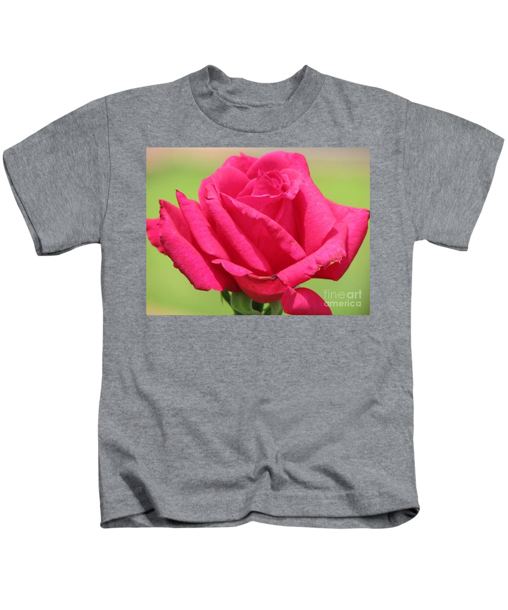 Roses Kids T-Shirt featuring the photograph The Rose by Amanda Barcon