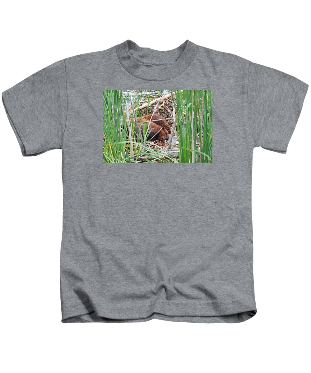 North American Beaver Kids T-Shirt featuring the photograph The Sleeping Beavers by Asbed Iskedjian