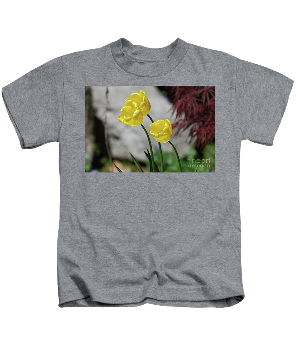 Tulip Kids T-Shirt featuring the photograph Three Yellow Garden Tulips Flowering In Spring by DejaVu Designs