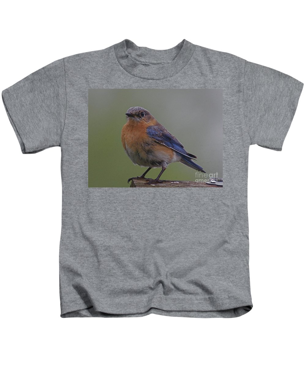 Related Tags: Birds Artwork Kids T-Shirt featuring the photograph Trusting by Robert Pearson