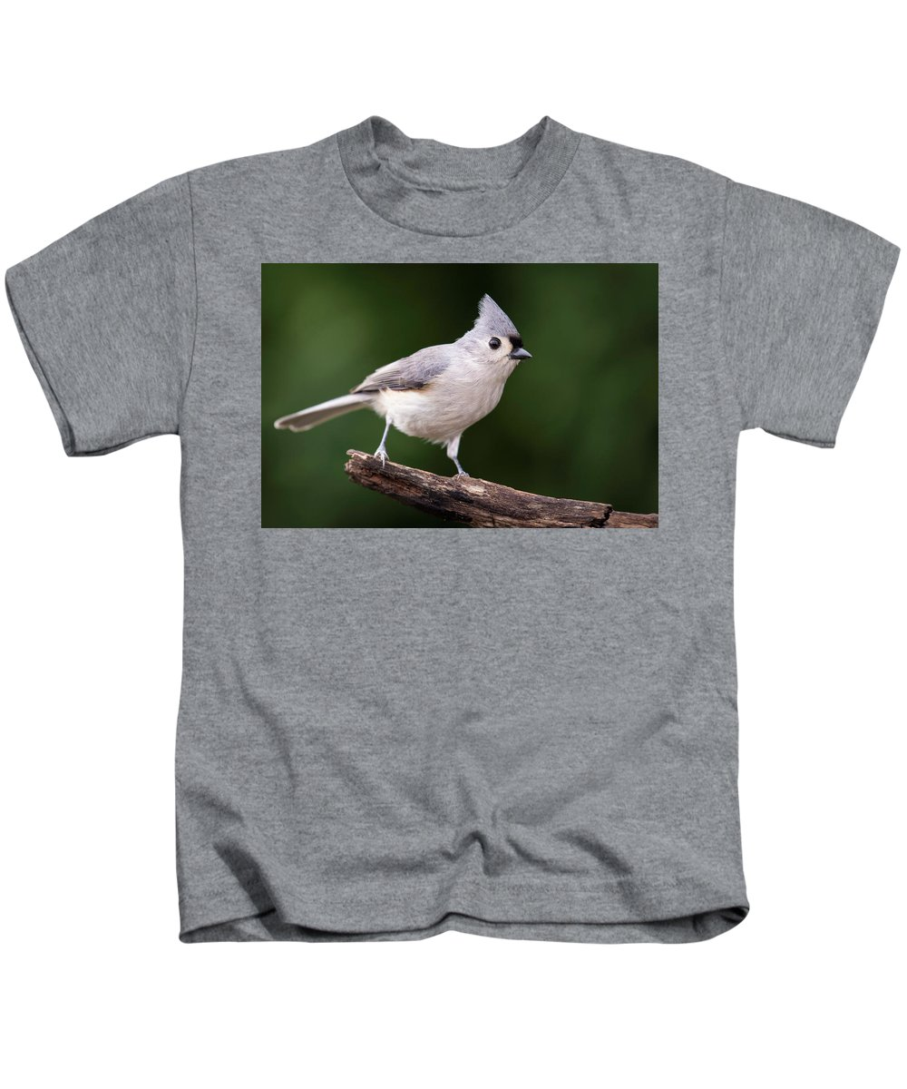 Tufted Titmouse Kids T-Shirt featuring the photograph Tufted Titmouse by Phil Thach