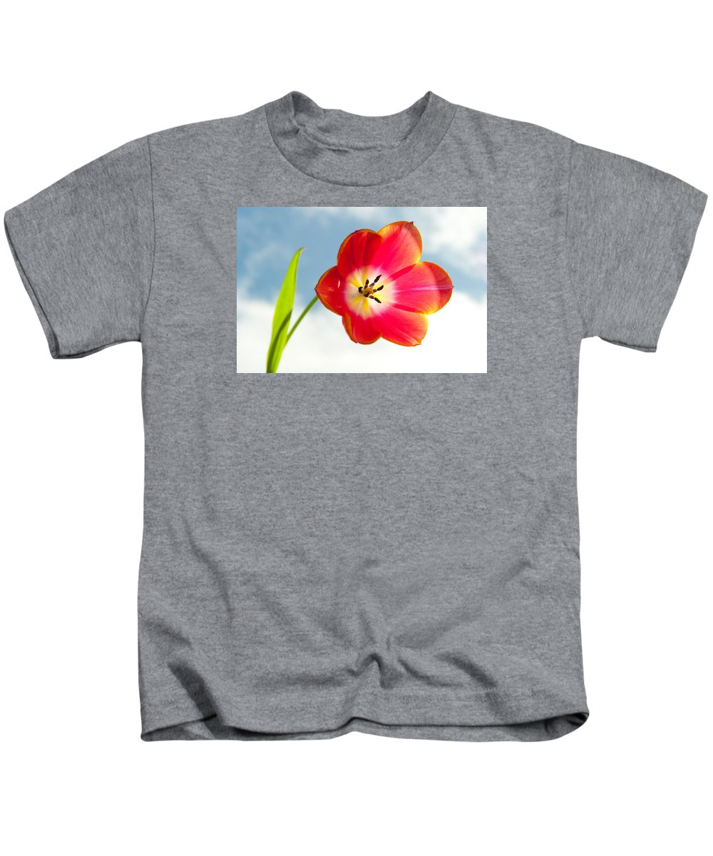 Helen Northcott Kids T-Shirt featuring the photograph Tulip In The Sky by Helen Northcott