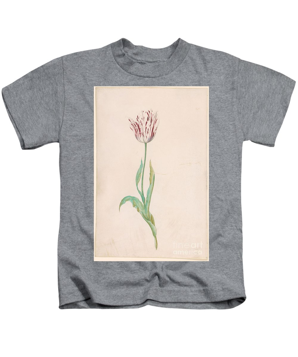 Jacob Marrel 1613 Or 14-1681 Tulip With Three Leaves Kids T-Shirt featuring the painting Tulip With Three Leaves by MotionAge Designs
