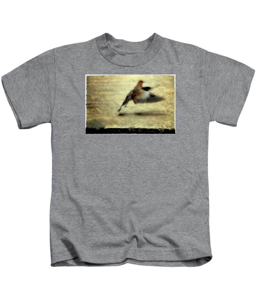 Jewish Kids T-Shirt featuring the photograph Turtle Dove by Deb Cohen