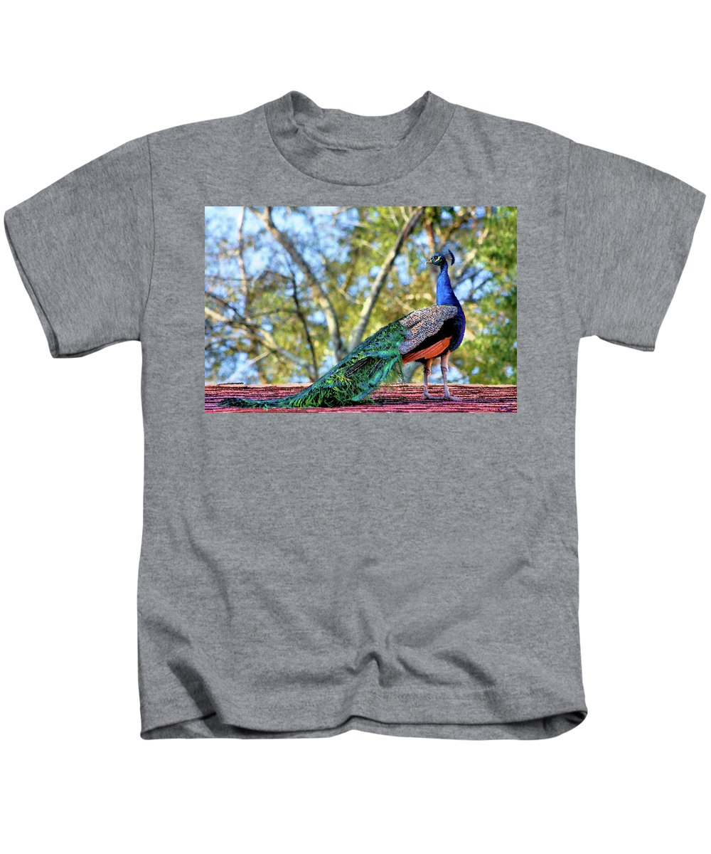 Peacock Kids T-Shirt featuring the photograph Up On The Roof by Kristin Elmquist