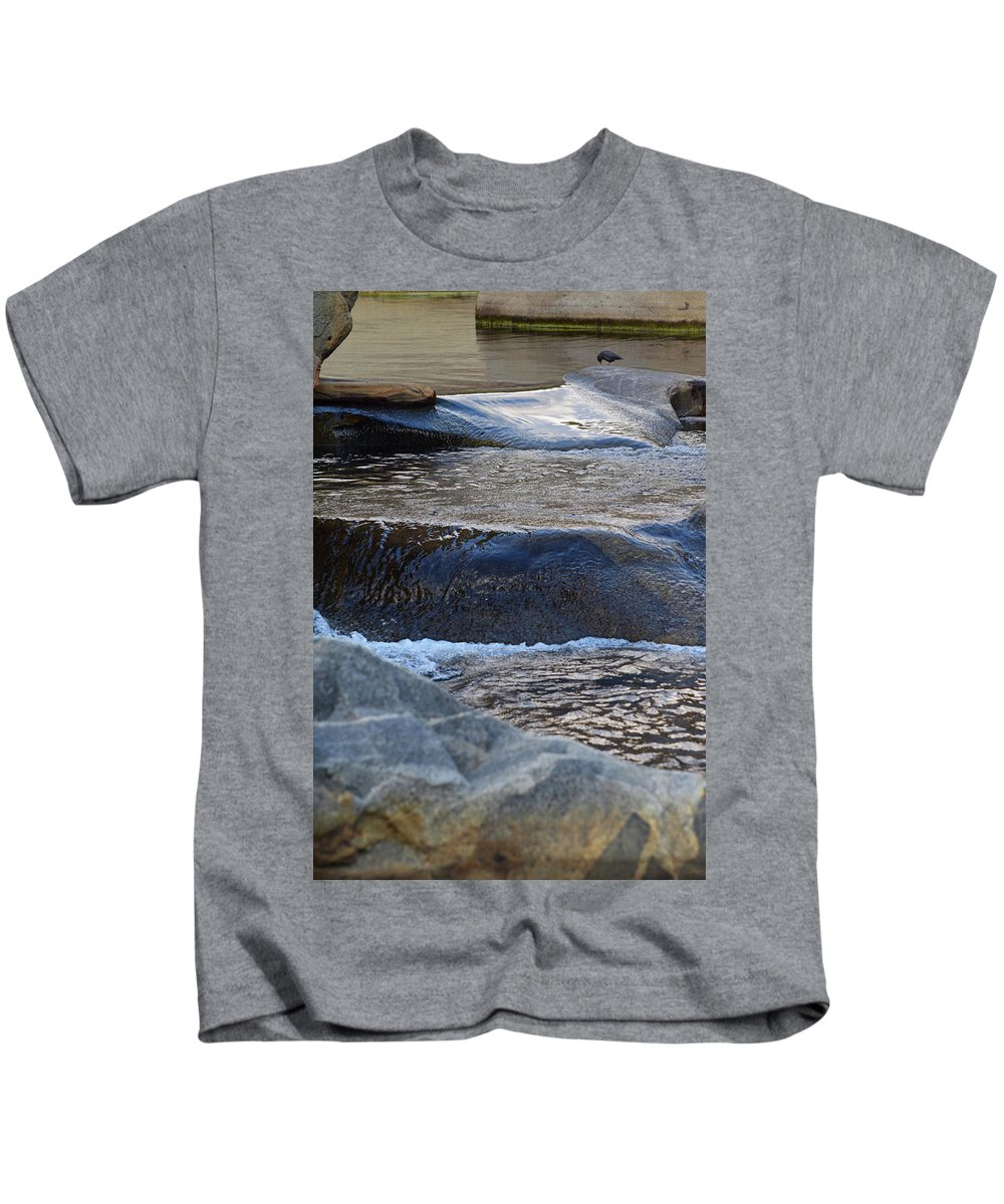 Nature Kids T-Shirt featuring the photograph Water Ouzel, Middle Fork Kaweah River, Sequioa National Park by Timothy Giller