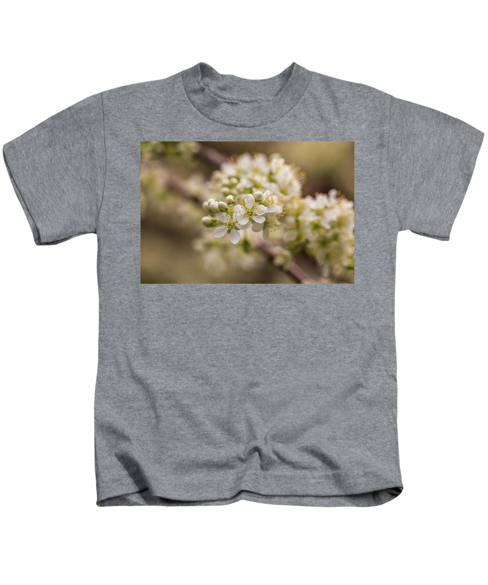 Plum Kids T-Shirt featuring the photograph White Plum Blossom by Calazone's Flics