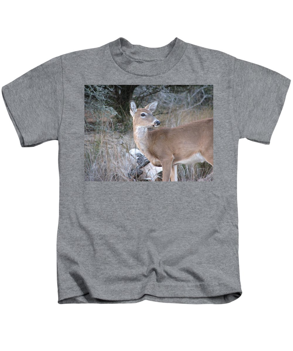 Deer Kids T-Shirt featuring the photograph Whitetail Deer by Stacey May
