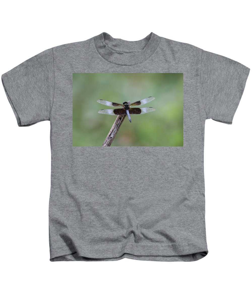 Ronnie Maum Kids T-Shirt featuring the photograph Widow Skimmer 2 by Ronnie Maum