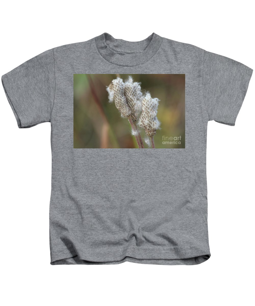 Anemone Kids T-Shirt featuring the photograph Wild Seed by Ann E Robson