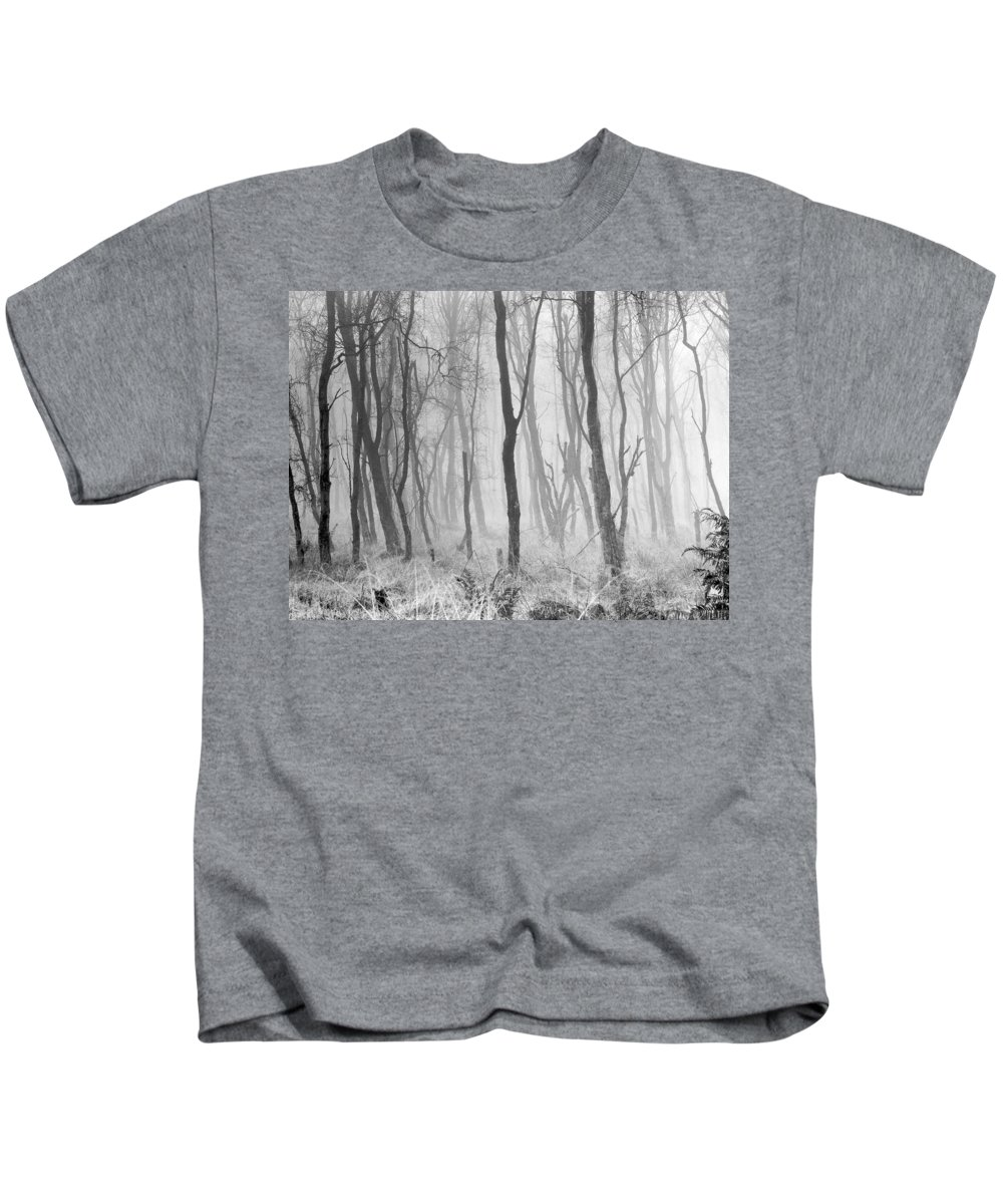 Kids T-Shirt featuring the photograph Woods In Mist, Stagshaw Common by Iain Duncan