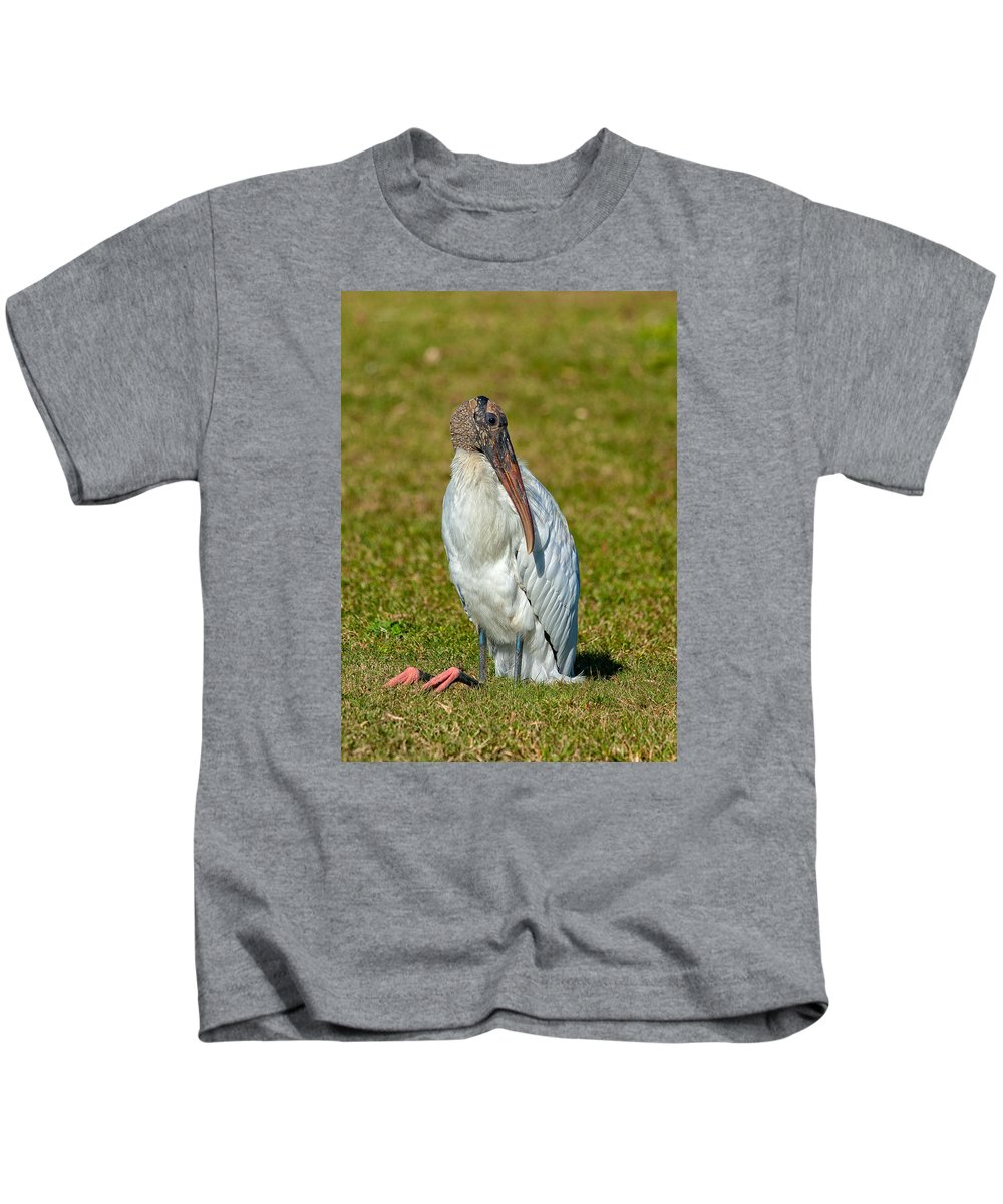 Birds Kids T-Shirt featuring the photograph Woodstork On The Lookout by John M Bailey