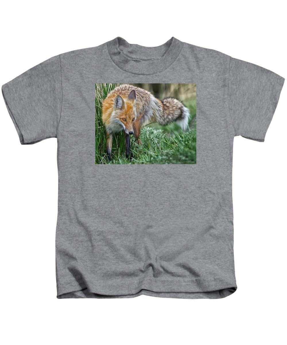 Yellowstone Fox Kids T-Shirt featuring the photograph Yellowstone Fox by CR Courson