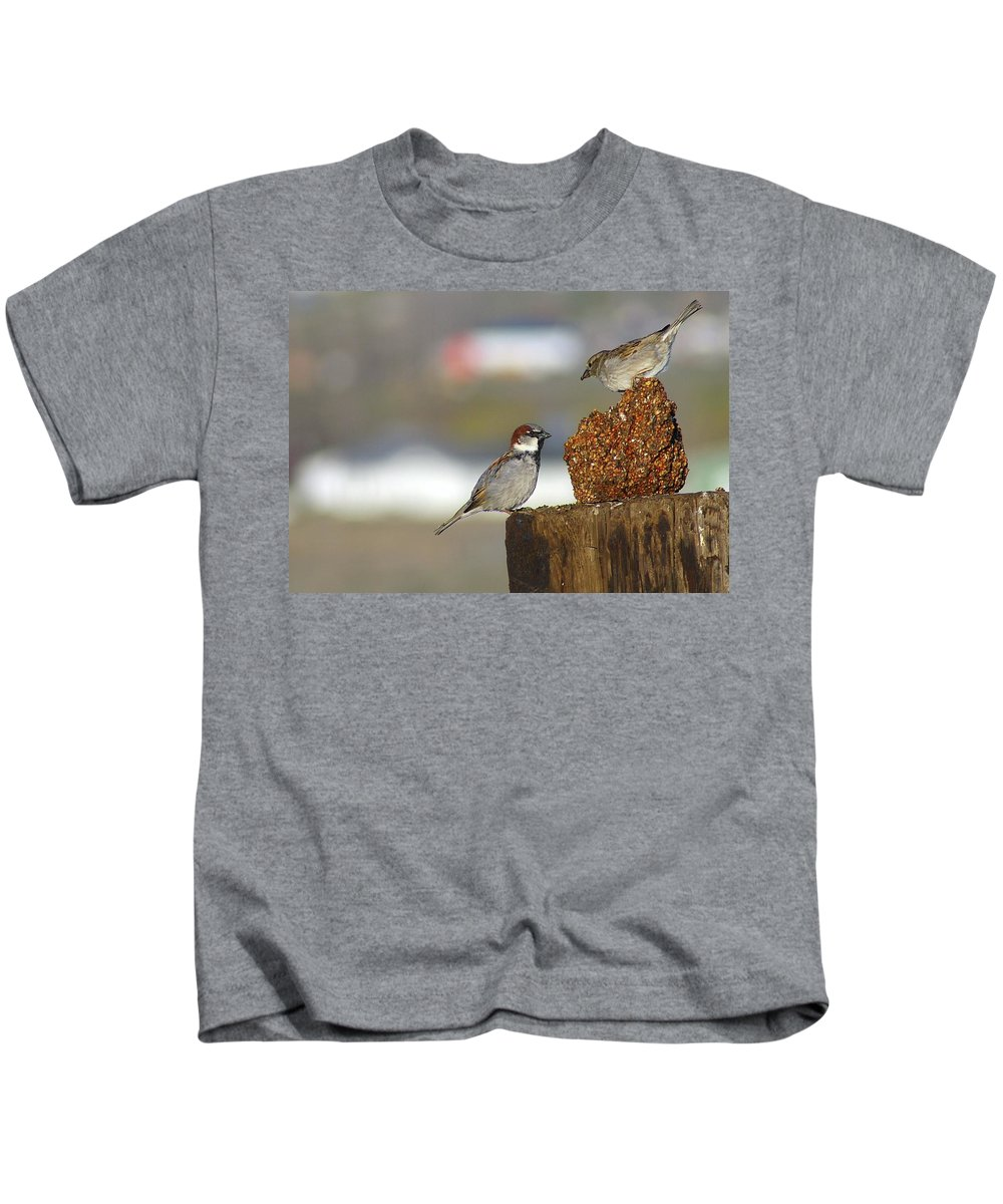 Birds Kids T-Shirt featuring the photograph Yippie by Jeff Swan