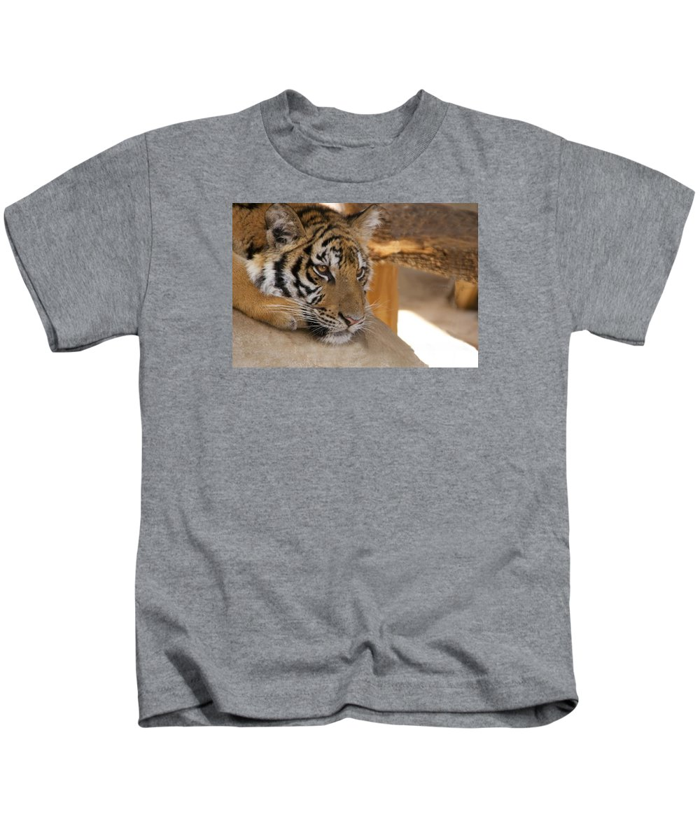 Tiger Kids T-Shirt featuring the photograph Young Tiger by Toni Berry