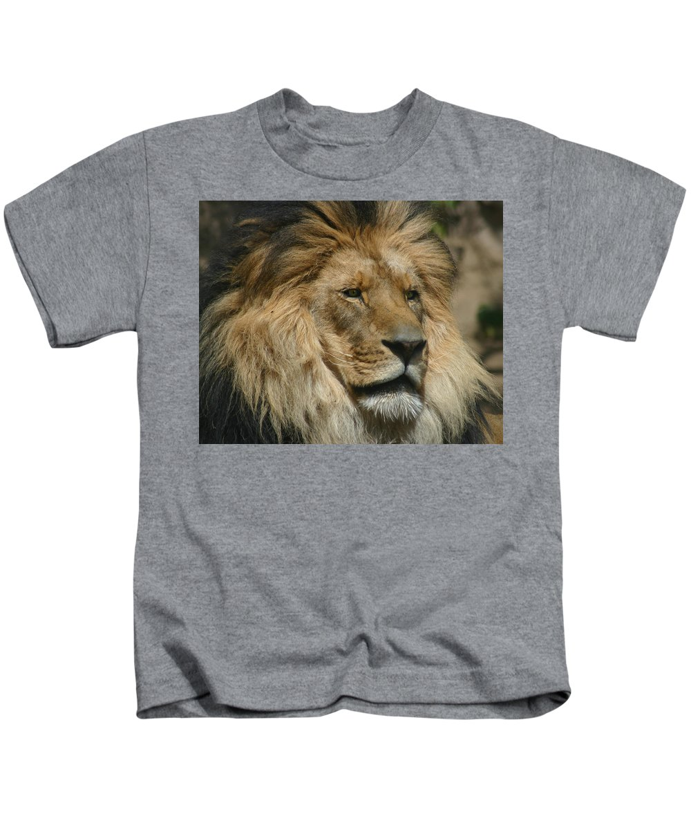 Lion Kids T-Shirt featuring the photograph Your Majesty by Anthony Jones