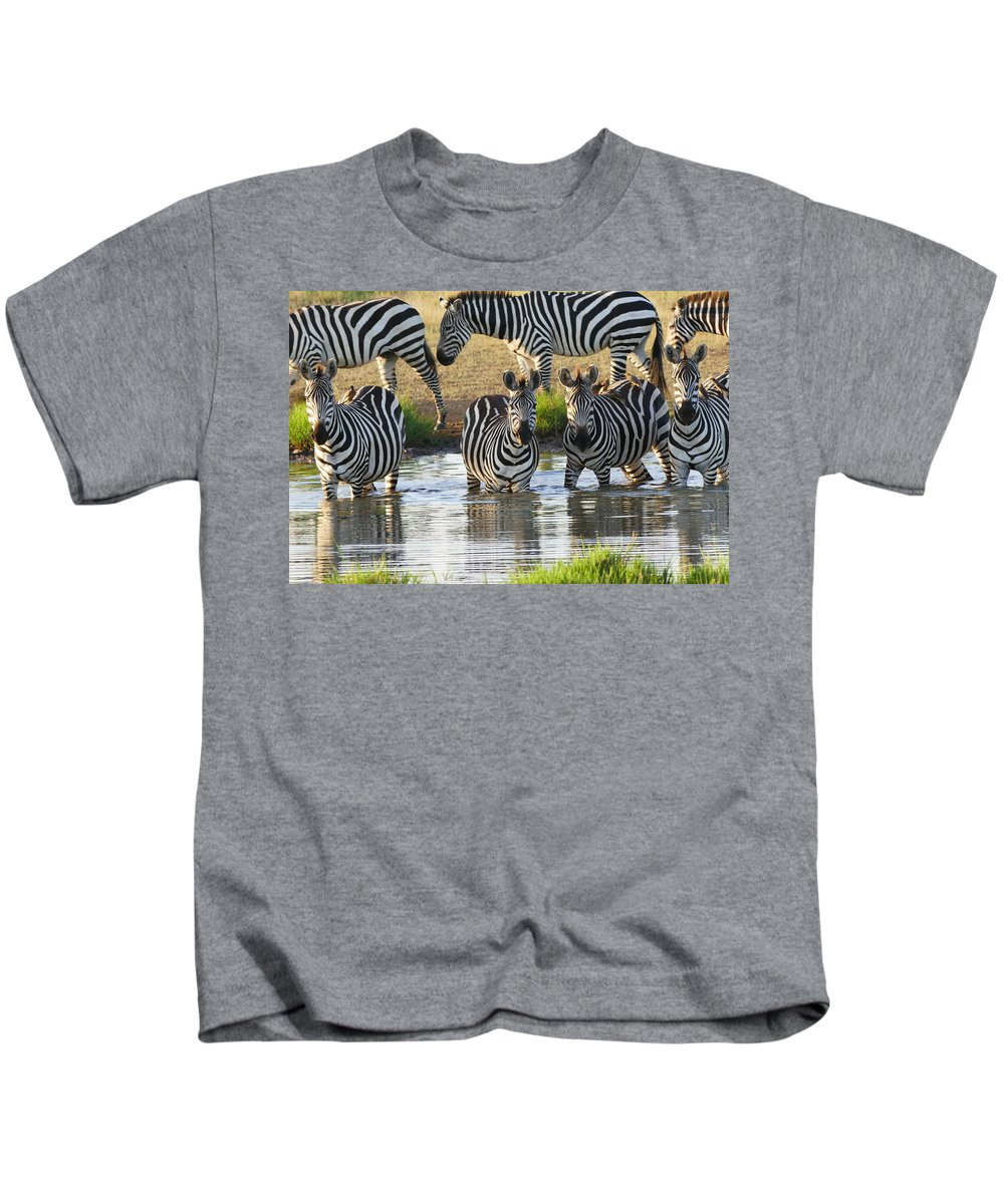 Kids T-Shirt featuring the photograph Zebra15 by Kathy Sidell
