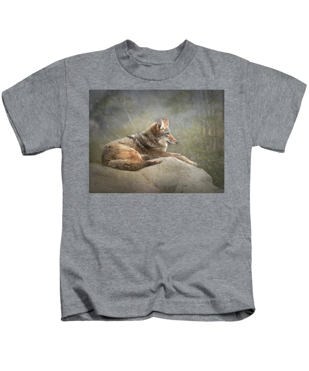 Coyote Kids T-Shirt featuring the photograph Afternoon Repose by Teresa Wilson