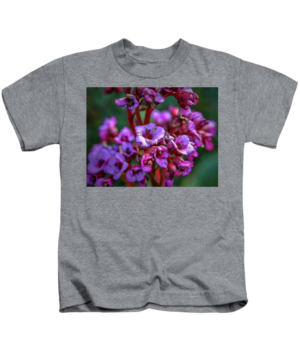 Leif Sohlman Kids T-Shirt featuring the photograph Lilac #h9 by Leif Sohlman