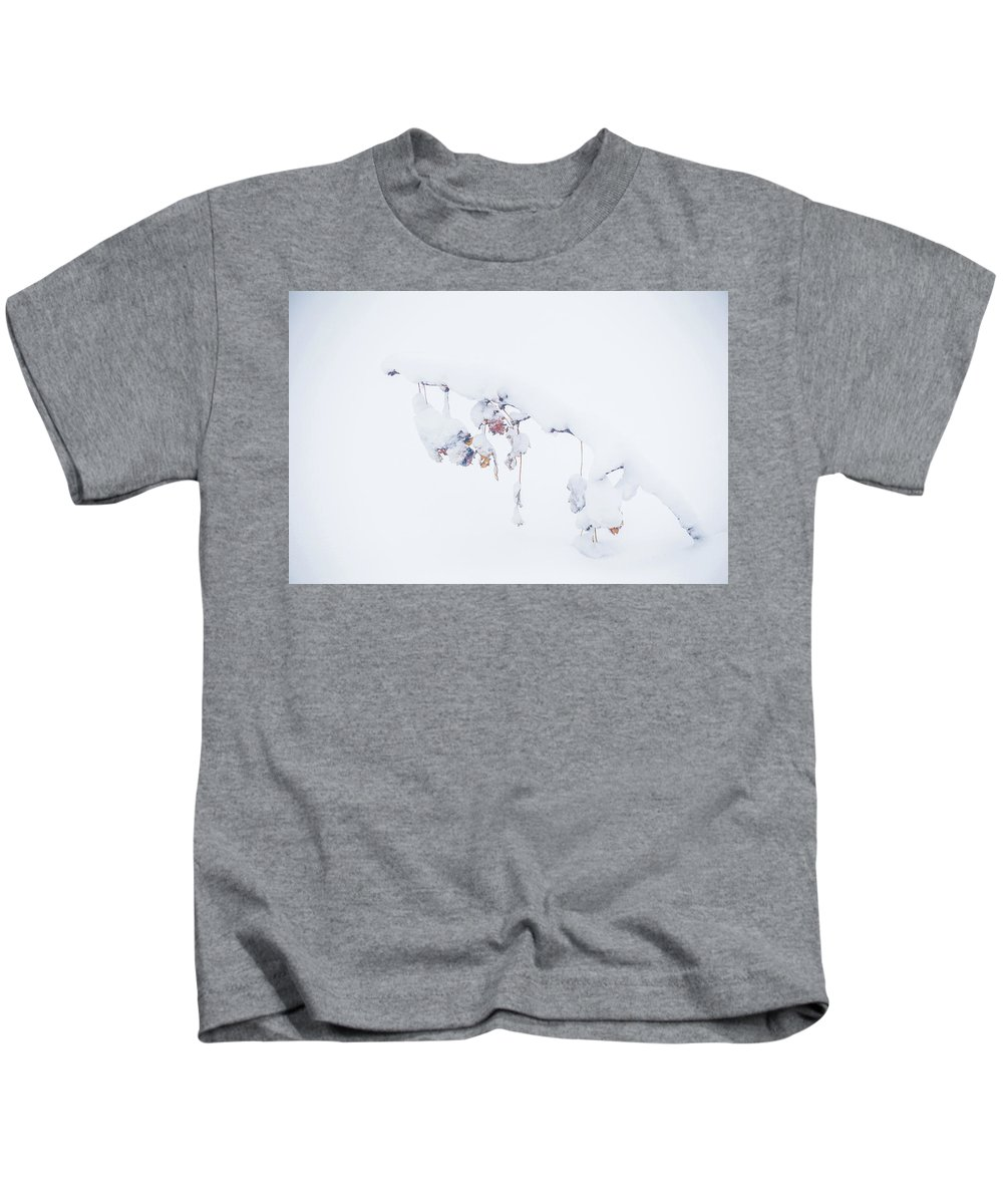Snow Kids T-Shirt featuring the photograph Nature's Ornaments by Lauri Novak